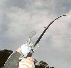 Competitive Edge Fishing