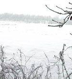 Рыболовный календарь. Январь — июнь