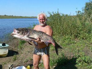 Астрахань ждет настоящих рыбаков !