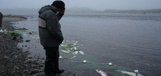 Рыбоохрана России. Летние рейды