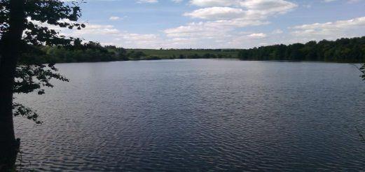 Рыболовный туризм набирает обороты в Тульской области