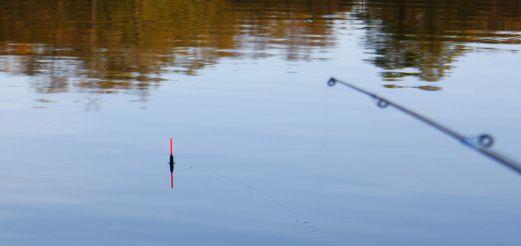 Поплавочная снасть для рыбалки