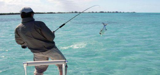 Отправляемся на рыбалку в Египет