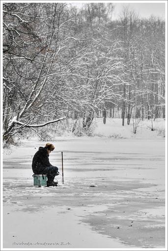 Фестиваль любительской рыбалки. «Зима на «Ловчем»