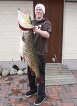 Финский рыбак поймал щуку весом в 17,8 килограмма