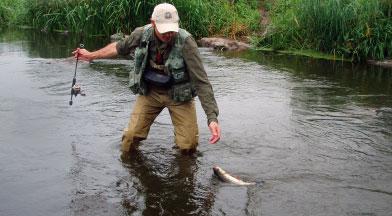 Идея статьи о ловле голавля возникла давно, поскольку голавль...