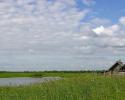 Прибрежная щука на большой реке