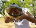инересное про рыб