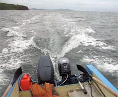 Тестирование лодочного мотора