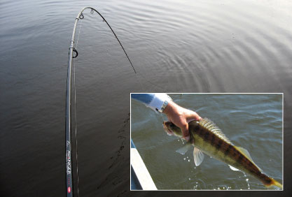 Mоя любимая рыбалка - ловля судака с лодки