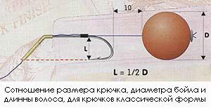 расстояние от цевья