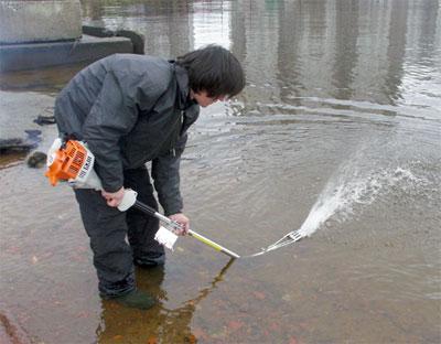 С газонокосилкой на рыбалку