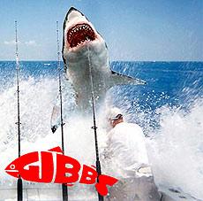 Gibbs – эффективная рыбалка на реках и озерах