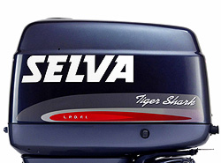 Система LPDI теперь и на двигателях Selva