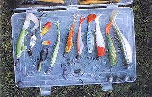 Приманки для ловли щуки на мелководье