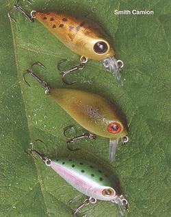 Профессиональный подход к рыбалке