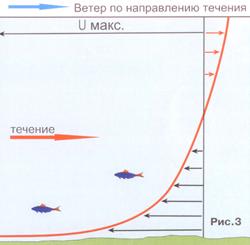 Речной лещ. Сила воды. Ч. 2