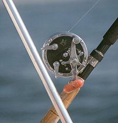 Рыболовные секреты - «структурный» троллинг.