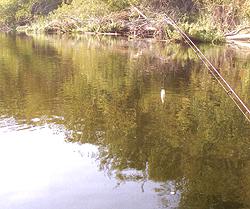 Сплав по реке Псел