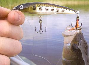 Увлечение спортивной рыбалкой вносит свои коррективы в комплектацию...
