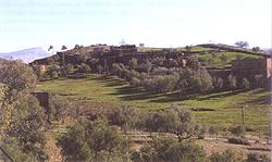 За марокканским карпом