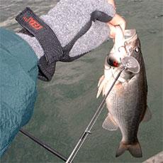 Настоящие рыболовные перчатки – какие они?..