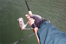 Настоящие рыболовные перчатки - какие они?