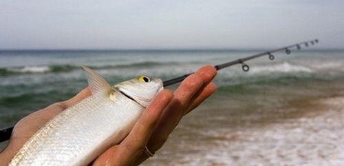 В чем прелесть морской рыбалки в Крыму?