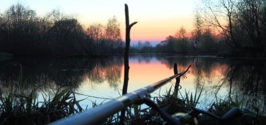 Утренняя рыбалка — как много в этом прекрасного!