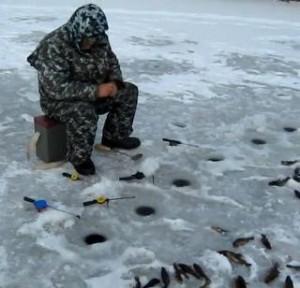 lovlja_rotana_zimoj