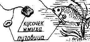1339303155_lovlya-karpa-na-pugovicu